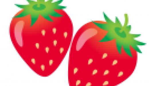 ふたつのイチゴちゃん(写真集付き)