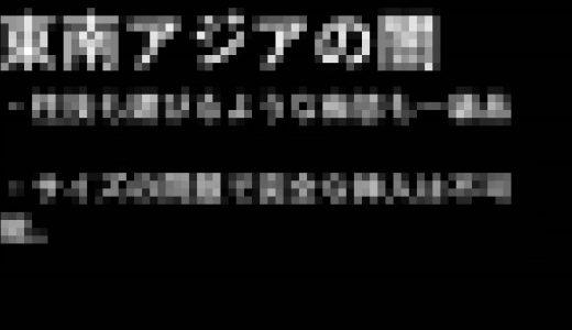 【短期販売】闇のハメ撮りin東南アジア
