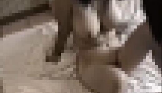 [円]たわわな美巨乳JKに中出し [無]
