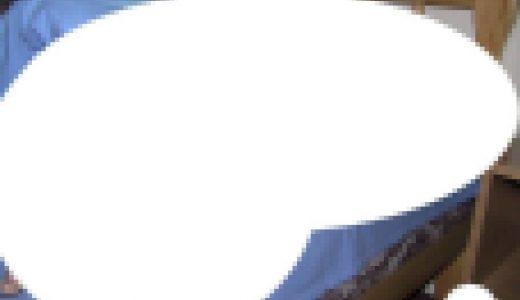 【画像大量】洋妖精写真4500枚超