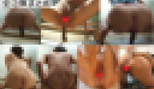 (無)麗子さんのウンコ①~⑥+アナル遊び 全7弾まとめ(自撮り)(GS-01)