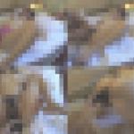 素人カップルのハメ撮り流出映像 8